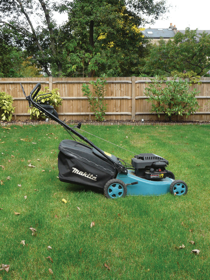 Image of Lawn mowing