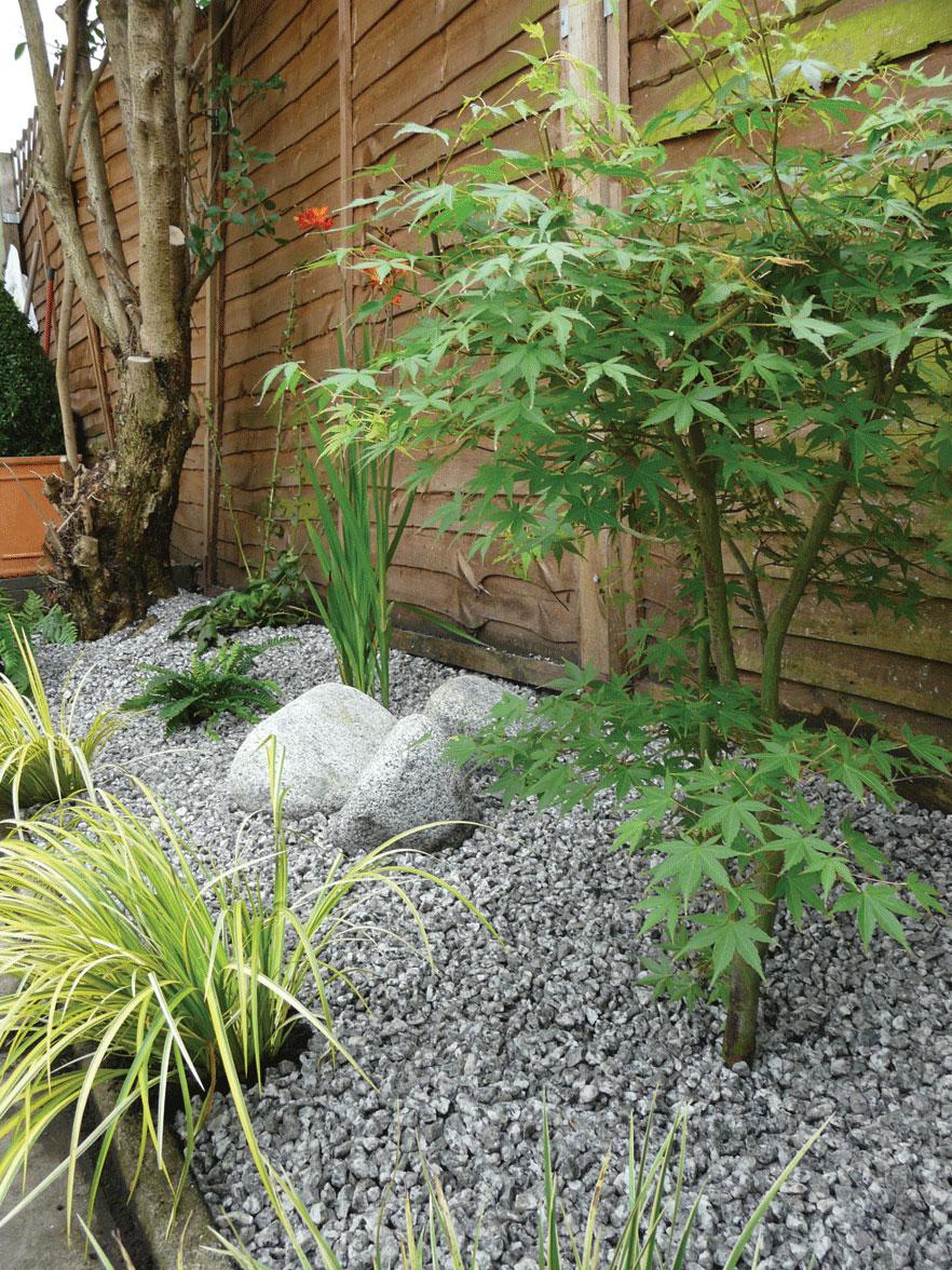 Image of Japanese style planting
