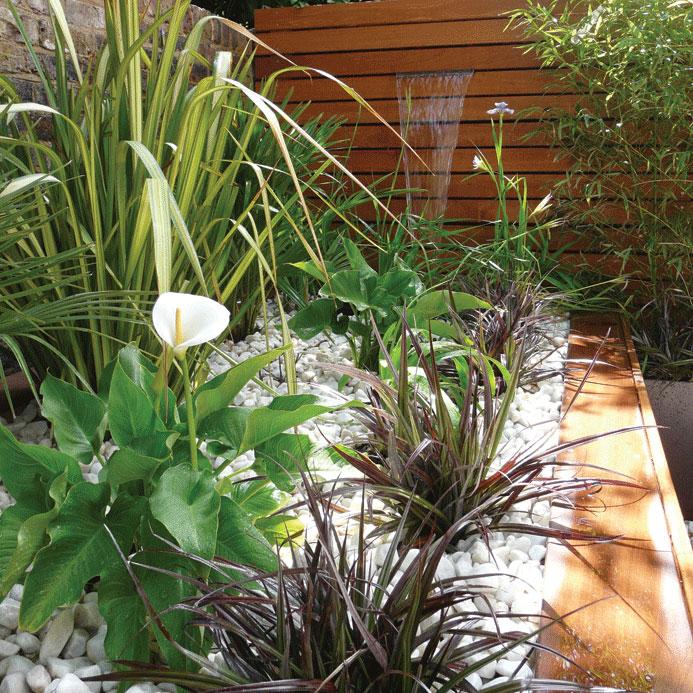 Image of Mixed evergreen raised planter